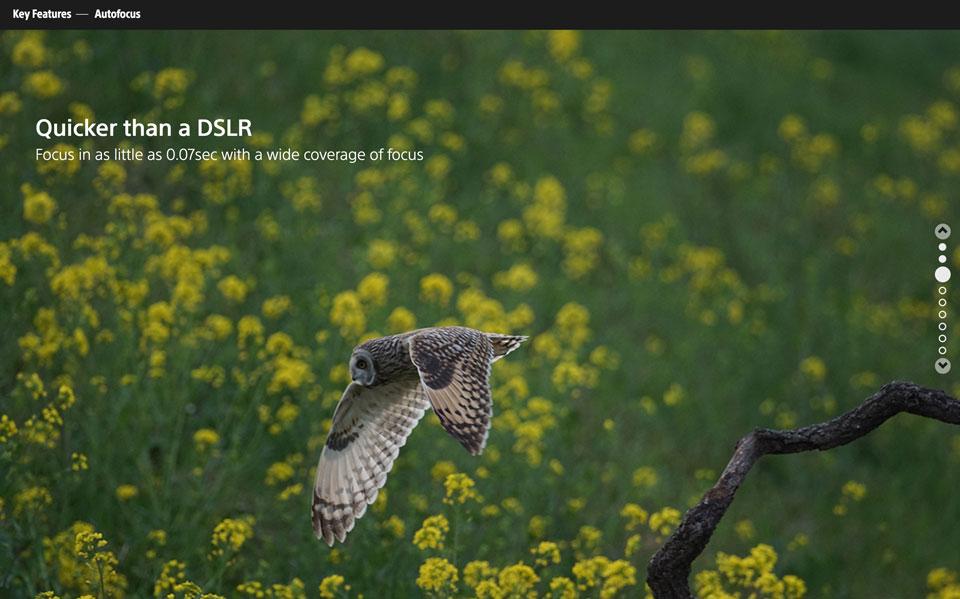CCDS Projekt - Sony Lern-CMS Frontpage